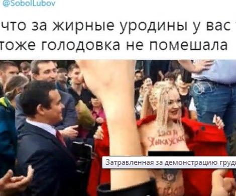 Активистка разделась на Трубной с одобрения оппозиции, уверен представитель РПЦ