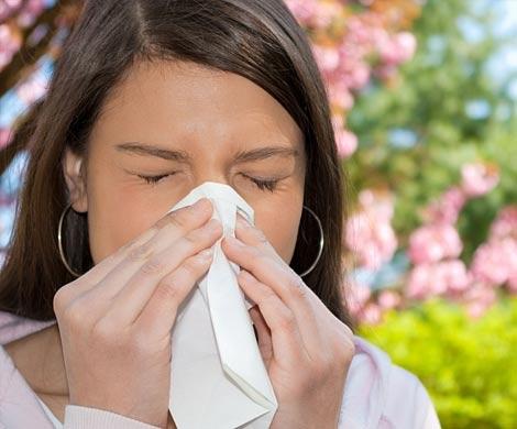 Ученые пояснили происхождение аллергии