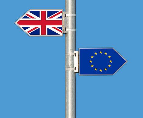 СМИ сообщили оботсутствии вВеликобритании единого плана поBrexit