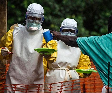 Число жертв Эболы в Конго превысило 1200 человек
