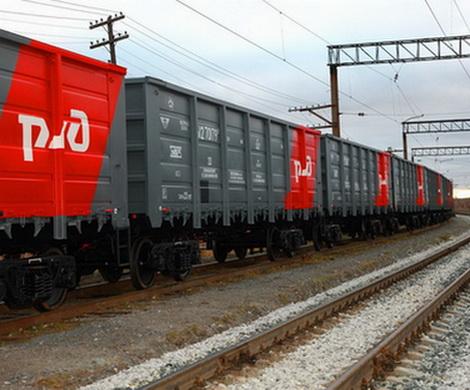 ФАС хочет лишить РЖД грузовых вагонов