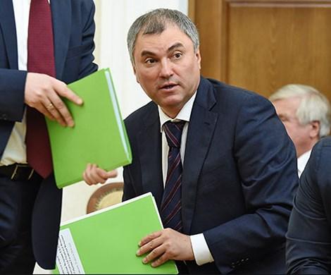 «Фейковый депутат»: Володина просят проверить деятельность Милонова