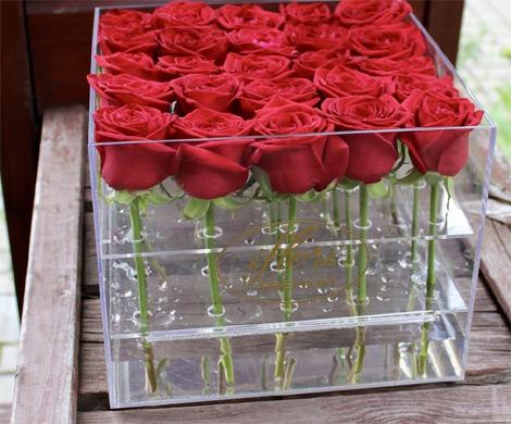 Какие розы представлены в России