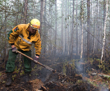 Леса Московской области и Якутии под особым контролем