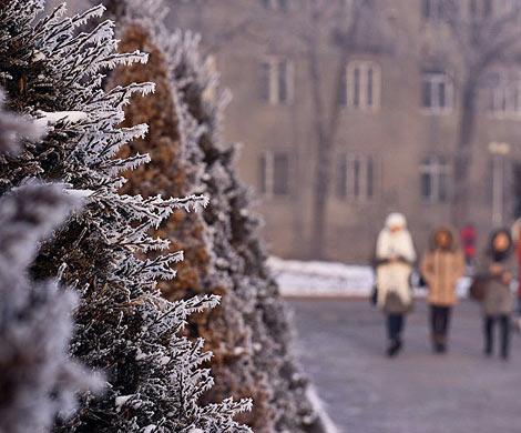 Вближайшие дни вЛитве предполагается похолодание, практически везде выпадет снег