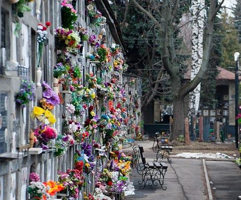 Москвичи смогут забронировать места для семейной усыпальницы онлайн