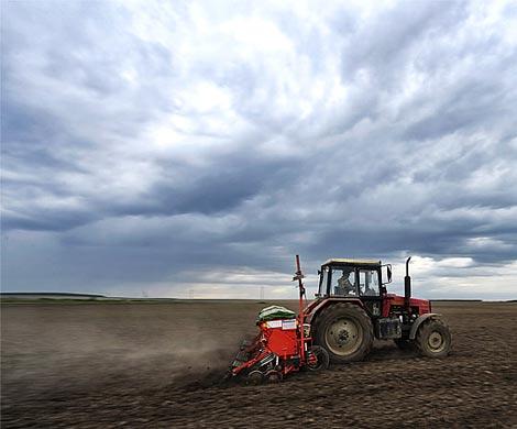 На Сахалине выдали первые бесплатные земельные участки