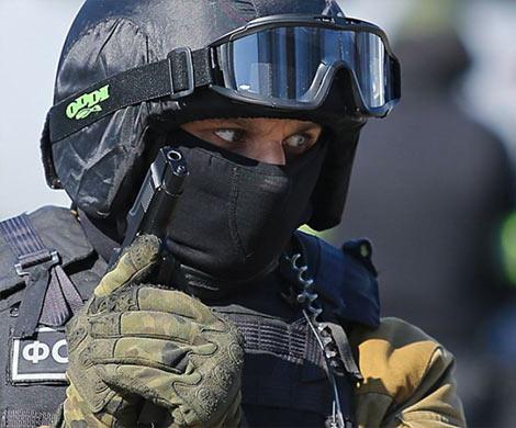 В Российской Федерации предотвращены теракты впроцессе выборов в Государственную думу
