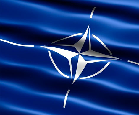 НАТО рассекретило количество и места дислокации ядерных бомб США