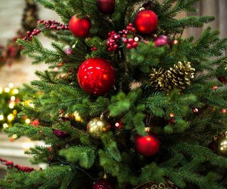 Названо число россиян, хранящих новогоднюю елку до лета