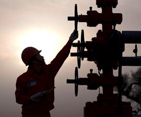 «Татнефть» и остальные нефтяные компании попросили Владимира Путина ограничить доступ миноритариев кинформации