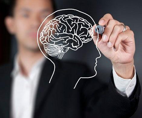Новое лекарство поможет восстанавливать возрастную потерю памяти?