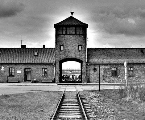 ВГермании будут судить 94-летнего экс-надзирателя Освенцима