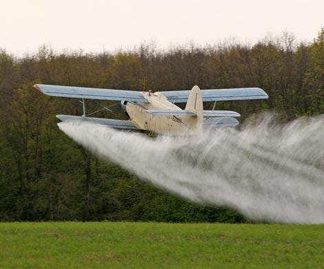 ВЛенинградском районе самолет случайно опрыскал огороды хуторян