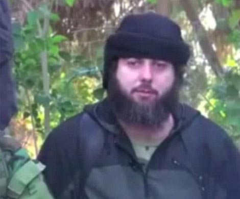 Правозащитники крышевали террориста