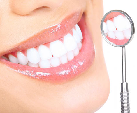 Регенерация зубов – это реально