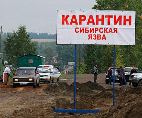 Роспотребнадзор предупредил о вспышке сибирской язвы на Украине