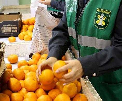 Россельхознадзор перепроверит вСирии подлинность продуктов для России