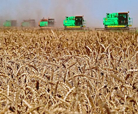 Российские аграрии потеряли из-за плохой погоды 7 млрд рублей