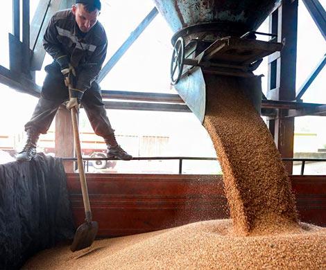 Российским аграриям не хватит вагонов для экспорта зерна