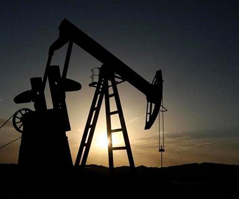 «Роснефть» загод увеличила среднесуточную добычу нефти игаза на11,1%
