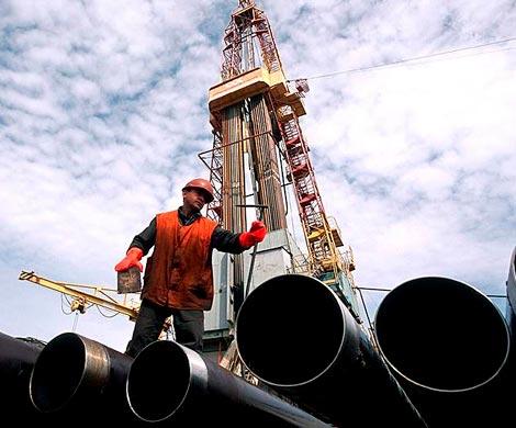 Российская Федерация сохранила лидерство попоставкам нефти игаза