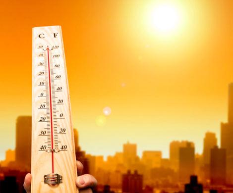 Ученые: КЗемле идет смертоносное потепление
