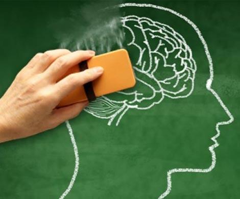 Способ для стирания собственной памяти открыли ученые