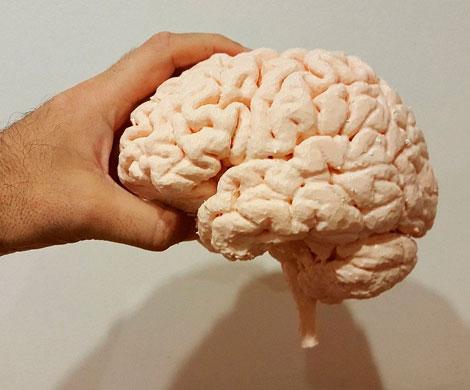 Ученые обнаружили способ побороть старение мозга