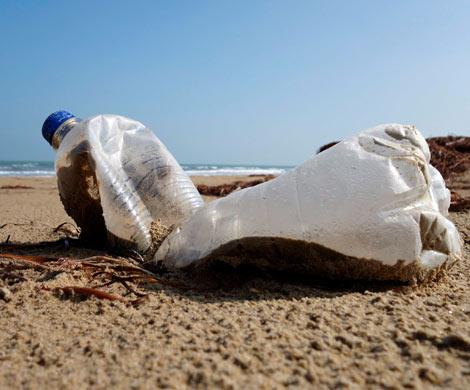Ученые создали поедающую пластик бактерию