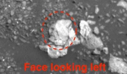 Ученый осуждает NASA всокрытии следов жизни наМарсе