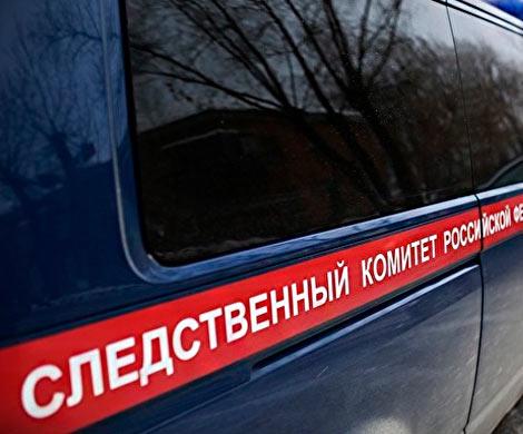 ВЧелябинскеСК РФ узнает причины таинственной смерти 12-летнего ребенка