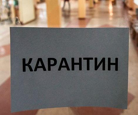 В двух школах Москвы ввели карантин из-за заболевания корью
