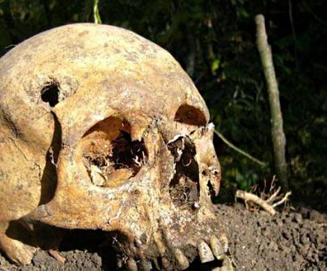 ВКитайской народной республике отыскали черепа старинных людей неизвестного вида