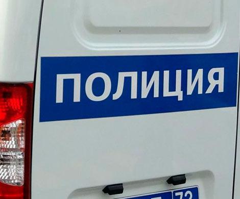 В квартире на шоссе Революции в Петербурге нашли два трупа