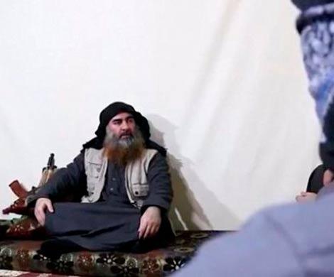 В США прокомментировали новое видео с аль-Багдади
