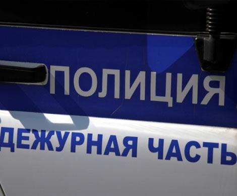 Полицейский изУстюжны сломал руку задержанному дебоширу