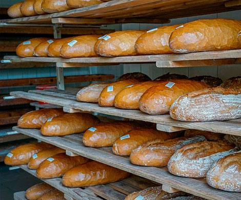 Хороший урожай хлебу не помог