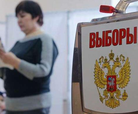 Начальник ВЦИОМ назвал низкую явку основным риском президентских выборов