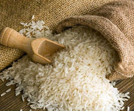 МинсельхозРФ невидит предпосылок для дефицита риса