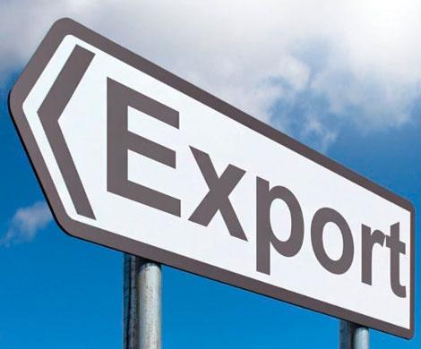 Экспортеры начнут работать в едином окне