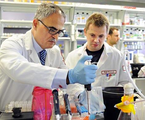 Английские ученые «взломали» систему вознаграждения мозга человека