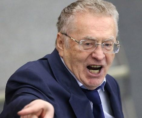 Жириновский против Хинштейна: Дума бессильна – звоните в полицию