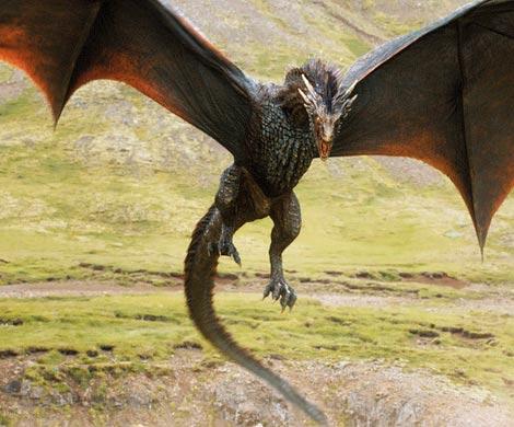 Жительница Нидерландов во всех людях видела драконов