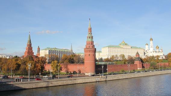 Политолог Валерий Соловей: в Кремле боятся протестов и принимают ошибочные решения